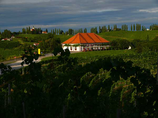 P&F Winery, Foto © P&F Winery
